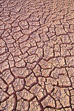 Mexico, Baja California, Dry lake bed