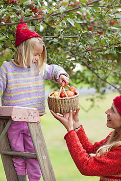 Mother and daughter picking up apples