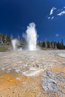 Upper Geyser Basin, USA, Wyoming