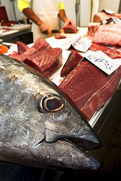 Tuna fish on fish market, Cadiz, Spain