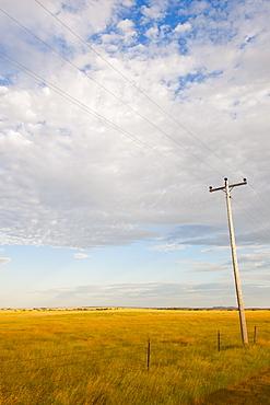Telephone pole in prairie