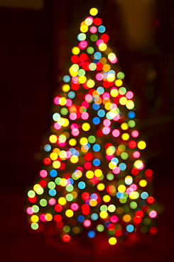 Defocused Christmas tree with colorful lights