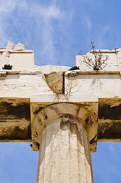Greece, Athens, Acropolis, Doric column of Propylaea