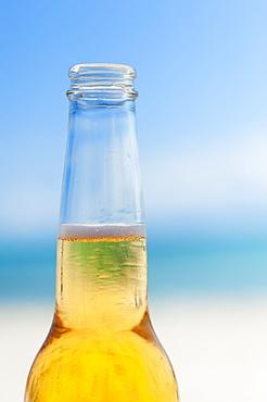 Beer bottle on beach