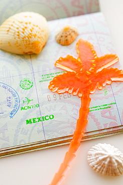 Passport with plastic palm