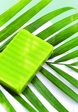 Soap and palm leaf