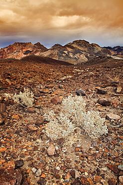 USA, California, Death Valley, barren landscape, USA, California, Death Valley