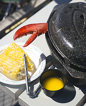 Lobster claw next to butter and corn, Maine, United States