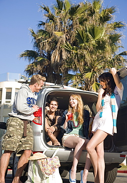 Friends tailgating under palm trees
