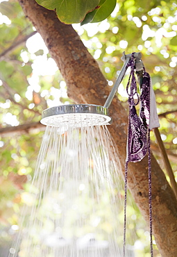 Outdoor shower under trees
