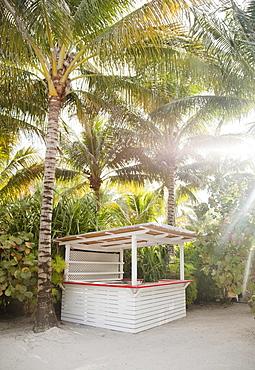 Bar in tropical beach setting