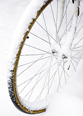 USA, New York State, Brooklyn, Williamsburg, bicycle wheel in snow