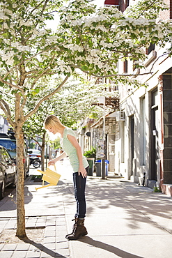 USA, New York, Williamsburg, Brooklyn, Woman watering tree on street
