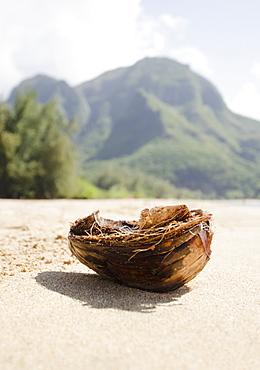 Tunnels Beach, Coastline, USA, Hawaii, Kauai, Tunnels Beach