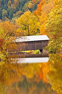 Bridge and reflection of fall foliage