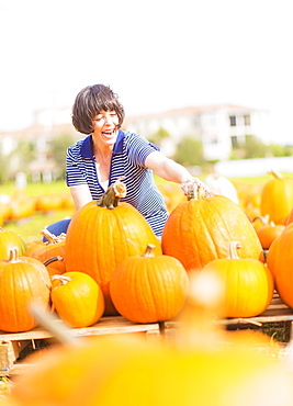 Mature woman picking up pumpkins, Jupiter, Florida