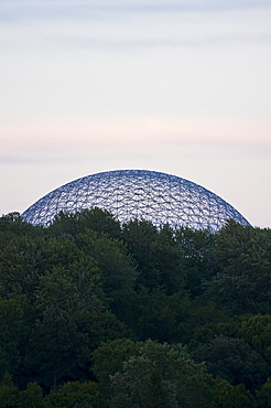 Trees in front of Biosphere