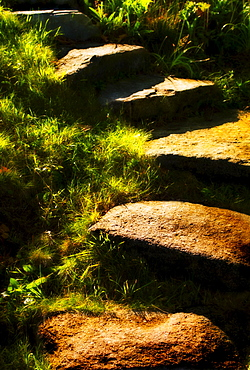 Stone steps in morning light, USA, New Hampshire, Portsmouth