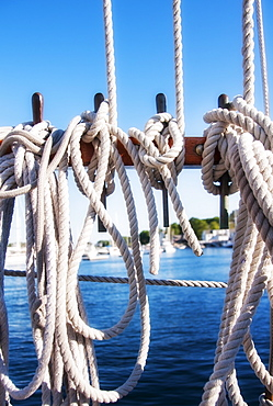 Coiled ropes on yacht deck, USA, Maine, Camden