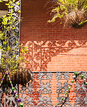 Close up of balcony with potted plants, USA, Louisiana, New Orleans