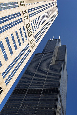 Sears Tower in Chicago Illinois USA