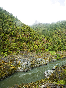 River running through forested canyon