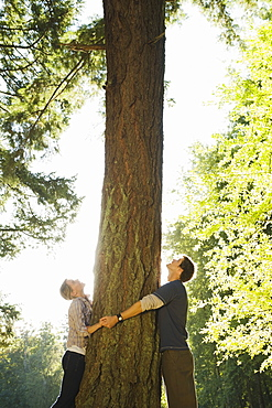 Couple hugging tree