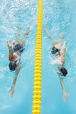 Women swimming laps in pool