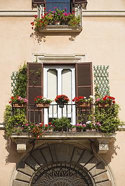 Balcony with flowers, Piazza Navona