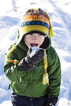 Boy (4-5) checking taste of snow