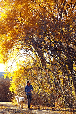 Woman walking her dog in forest, Colorado, USA