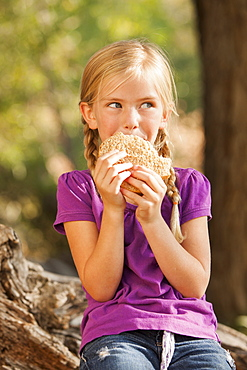 Little girl (4-5) eating peanut butter and jelly sandwich, Lehi, Uta