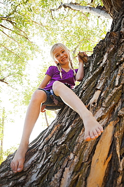 Wide angle shot of little girl (4-5) sitting in tree, Lehi, Utah