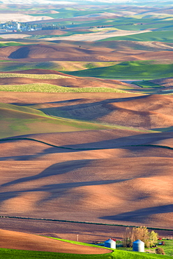 Farm on wheat field, Palouse, Washington