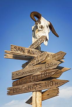 Animal skull on top of directional sign, USA, South Dakota, Okaton