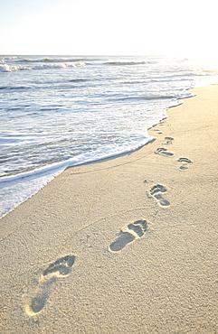 Footprints on beach by sea, Nantucket, Massachusetts,USA