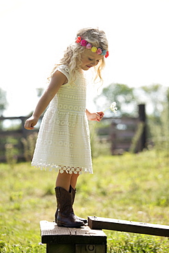 Cute girl (4-5) in white dress standing on fence in meadow, USA, New Jersey, Oldwick