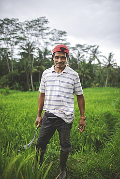 Farm worker holding scythe in field in Bali, Indonesia