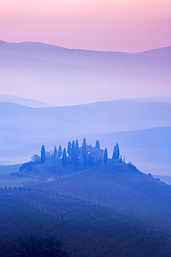 Trees on hills at sunset in Tuscany, Italy