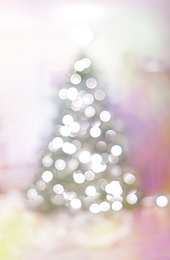 Christmas tree with lights in soft focus
