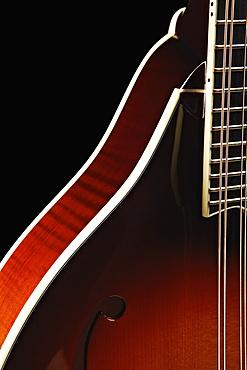 Close-upof mandolin