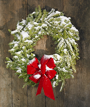 Christmas wreath hung on a wall