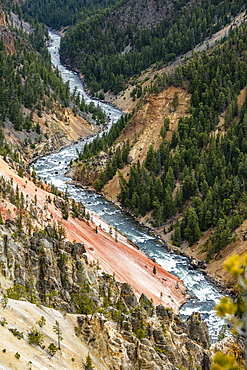 USA, Wyoming, Yellowstone National Park, Yellowstone River flowing through Grand Canyon in Yellowstone National Park
