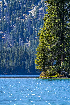USA, Idaho, Stanley, Alpine lake and trees in Sawtooth Range
