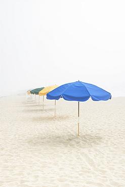 Empty beach with umbrellas and fog