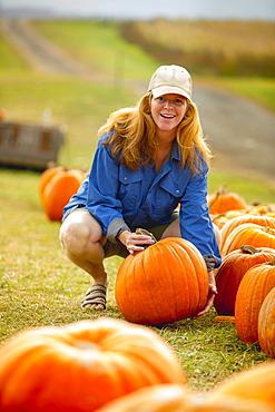 United States, Virginia, Woman harvesting pumpkins