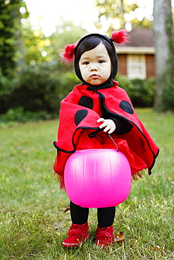 Young girl dressed up as ladybird with trick or treat bucket