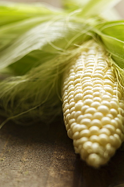 Close up of corn cob on table