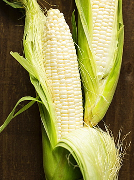 Overhead close up view of two corn cobs