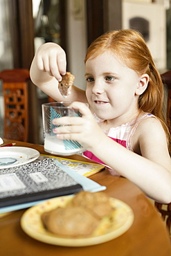 Girl dipping biscuit into glass of milk at dining room table
